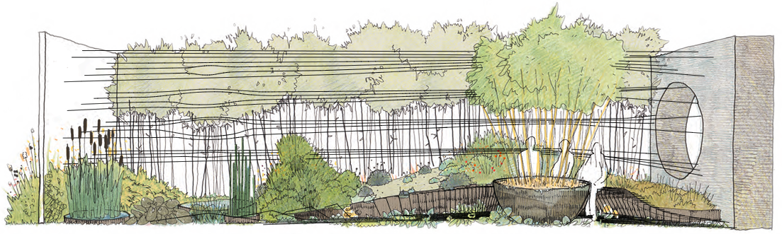 Dark Matter garden design for Chelsea 2015